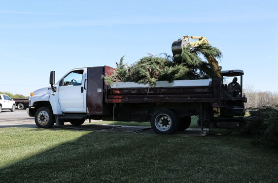 large white contractor truck transporting branches